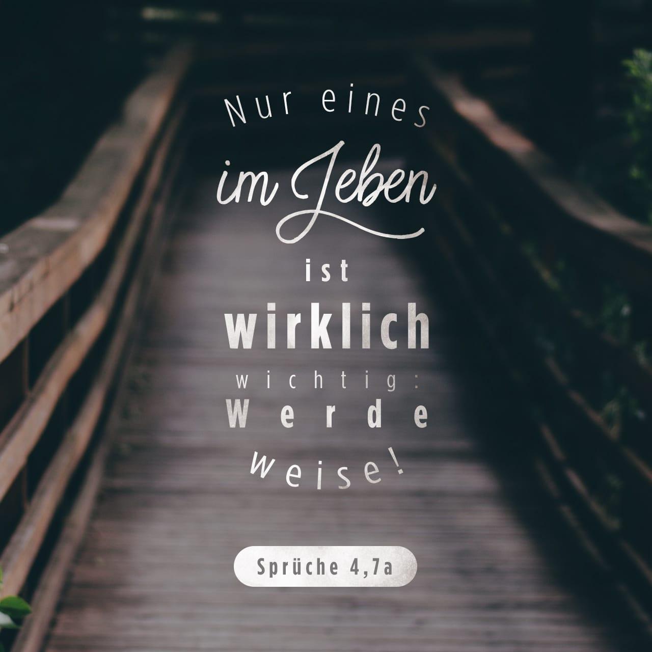 was ist wirklich wichtig im leben sprüche Sprüche 4:7 9 Nur eins im Leben ist wirklich wichtig: Werde weise  was ist wirklich wichtig im leben sprüche