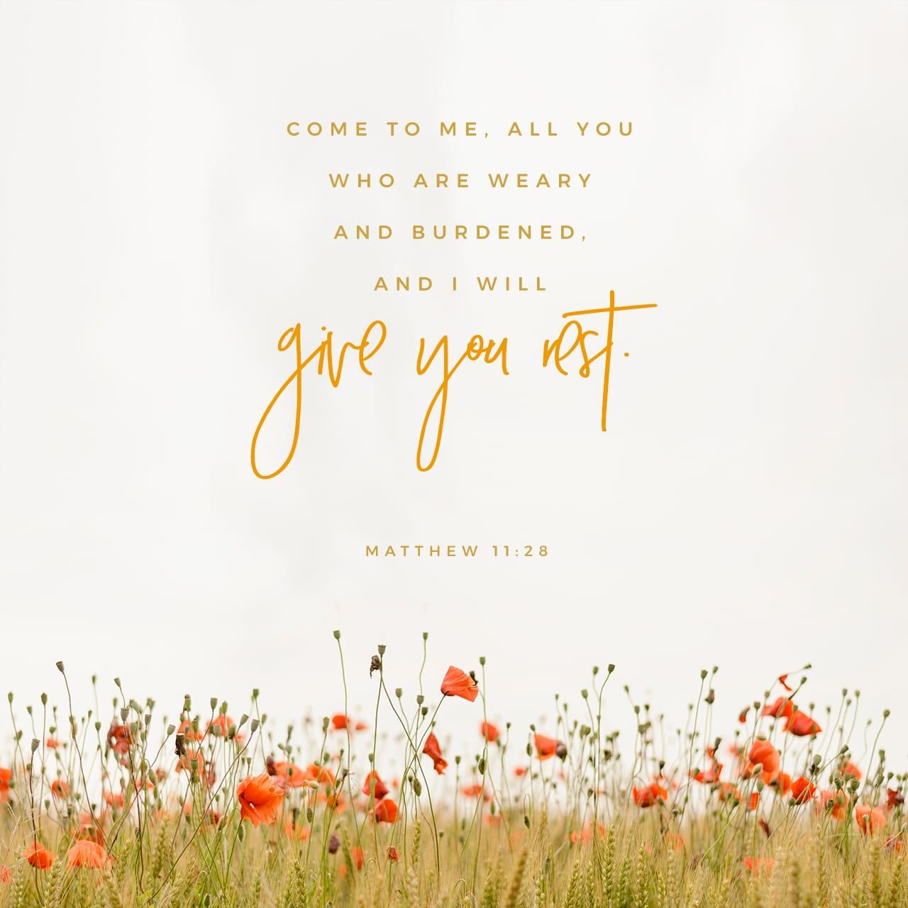 """Mateus 11:28 """"Venham a mim, todos os que estão cansados e sobrecarregados, e eu darei descanso a vocês.   Nova Versão Internacional Português (NVI-P)"""