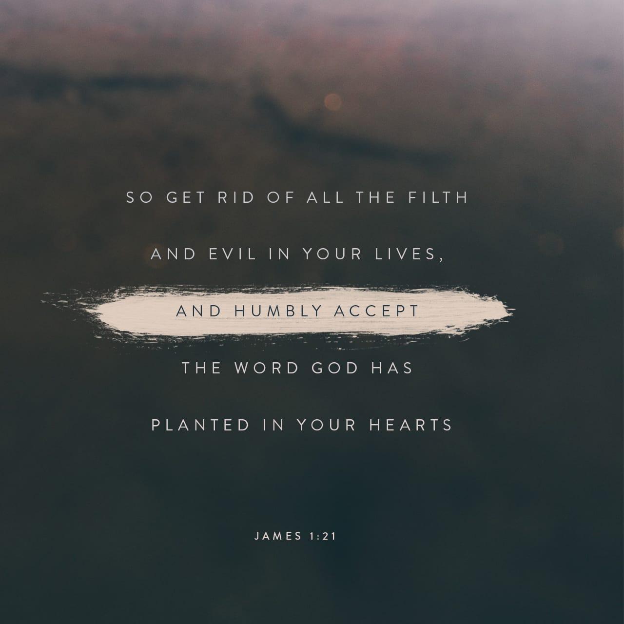 Santiago 1:21 Por lo cual, desechando toda inmundicia y abundancia de malicia, recibid con mansedumbre la palabra implantada, la cual puede salvar vuestras almas. | Biblia Reina Valera 1960 (RVR1960)