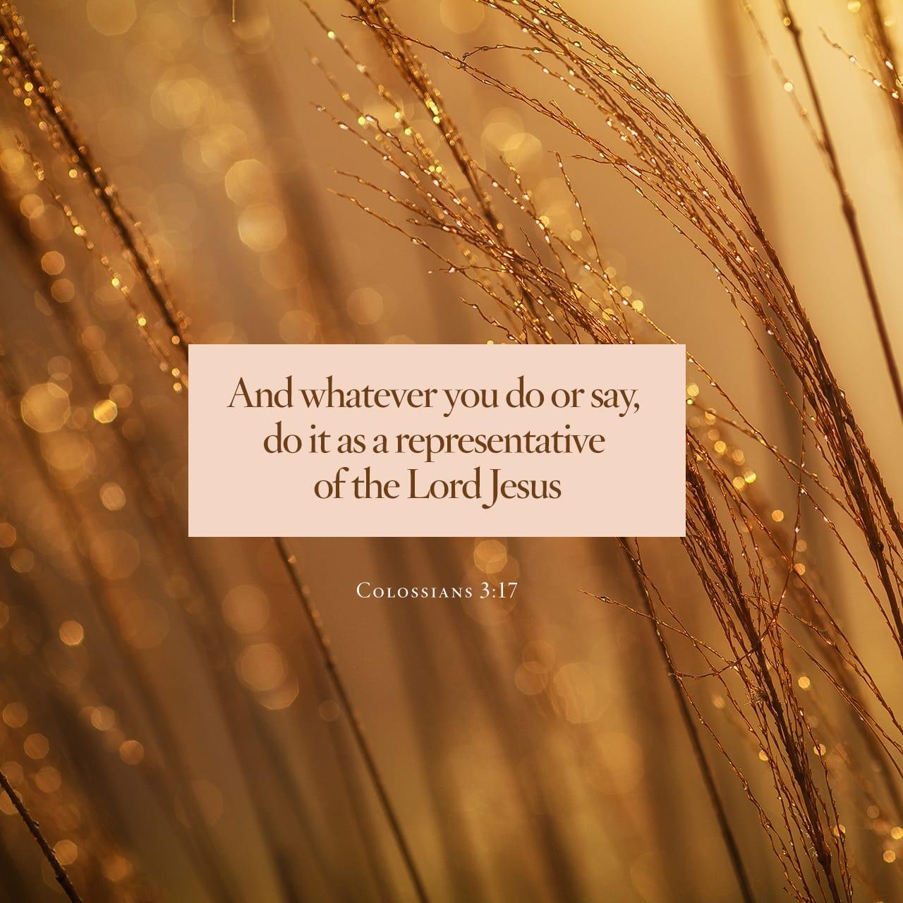 Colosenses 3:17 Y todo lo que hacéis, sea de palabra o de hecho, hacedlo todo en el nombre del Señor Jesús, dando gracias a Dios Padre por medio de él. | Biblia Reina Valera 1960 (RVR1960)