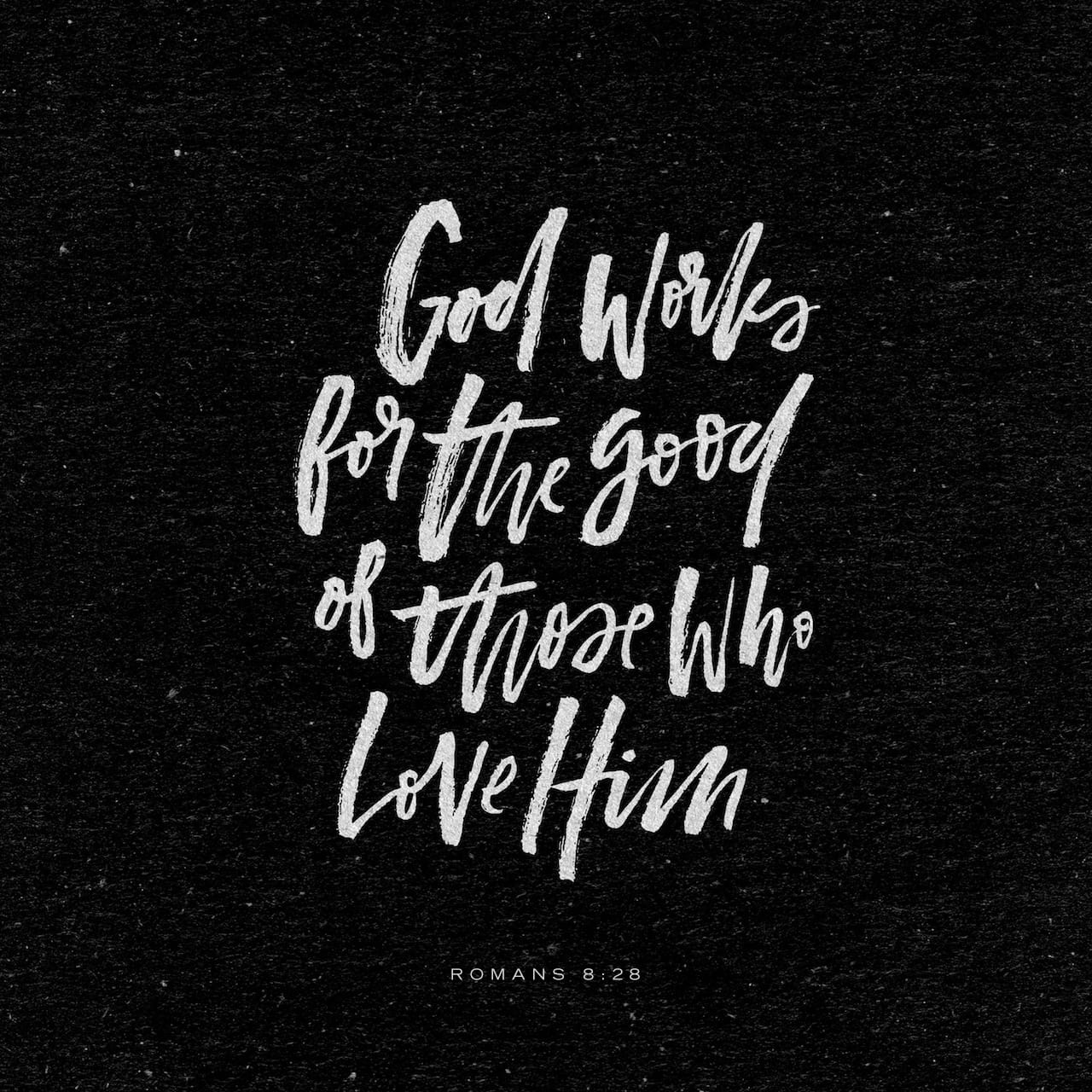Romans 8:28 And we know that all things work together for good to them that love God, to them who are the called according to his purpose. | King James Version (KJV)