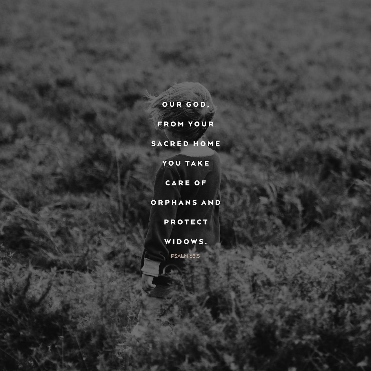 Salmos 68:5 Padre de huérfanos y defensor de viudas Es Dios en su santa morada. | Biblia Reina Valera 1960 (RVR1960)