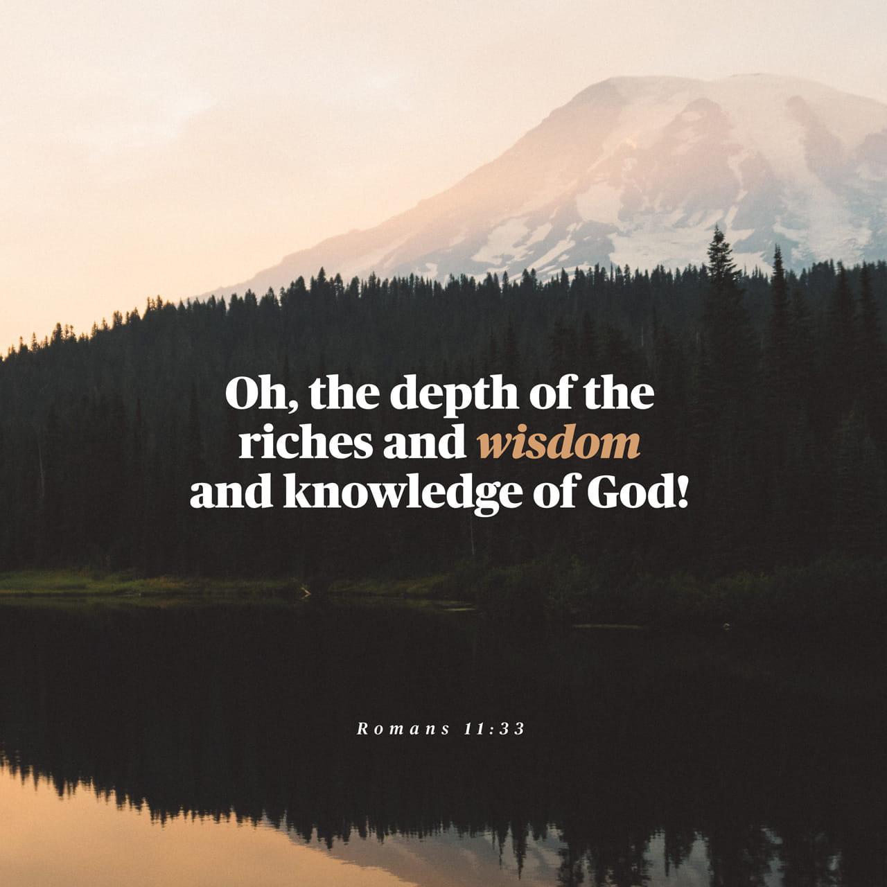 Romanos 11:33 Como são grandes as riquezas de Deus! Como são profundos o seu conhecimento e a sua sabedoria! Quem pode explicar as suas decisões? Quem pode entender os seus planos? | Nova Tradução na Linguagem de Hoje (NTLH)