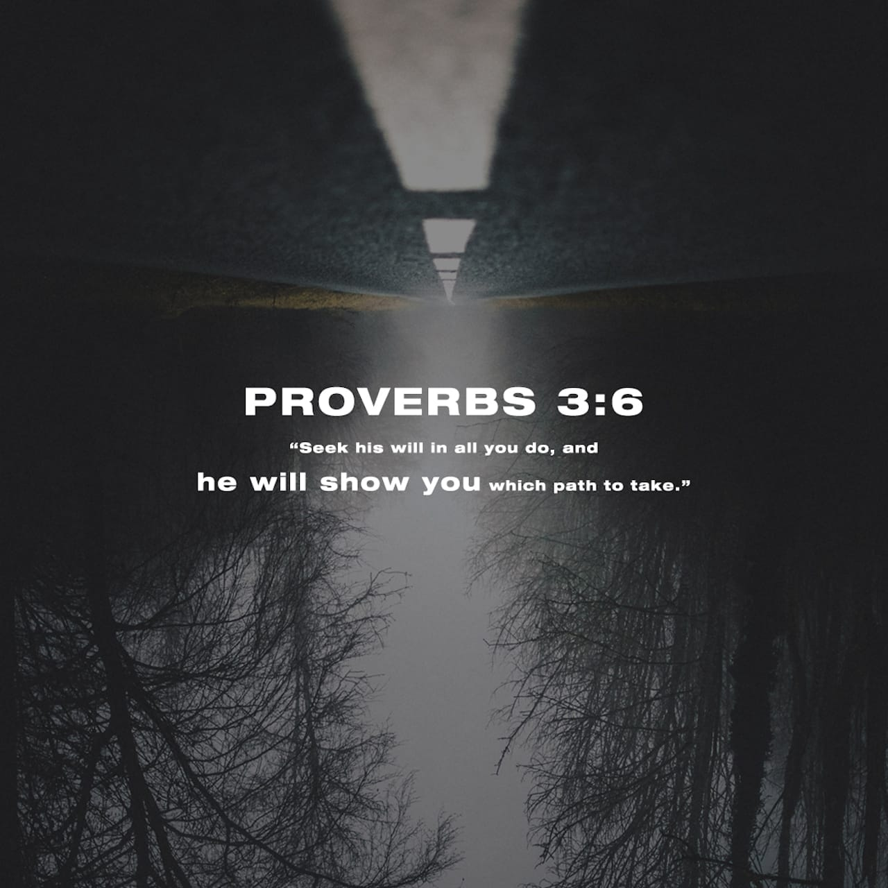 Proverbs 3:5-6 Trust in the LORD with all your heart and lean not on your own understanding; in all your ways submit to him, and he will make your paths straight. | New International Version (NIV)