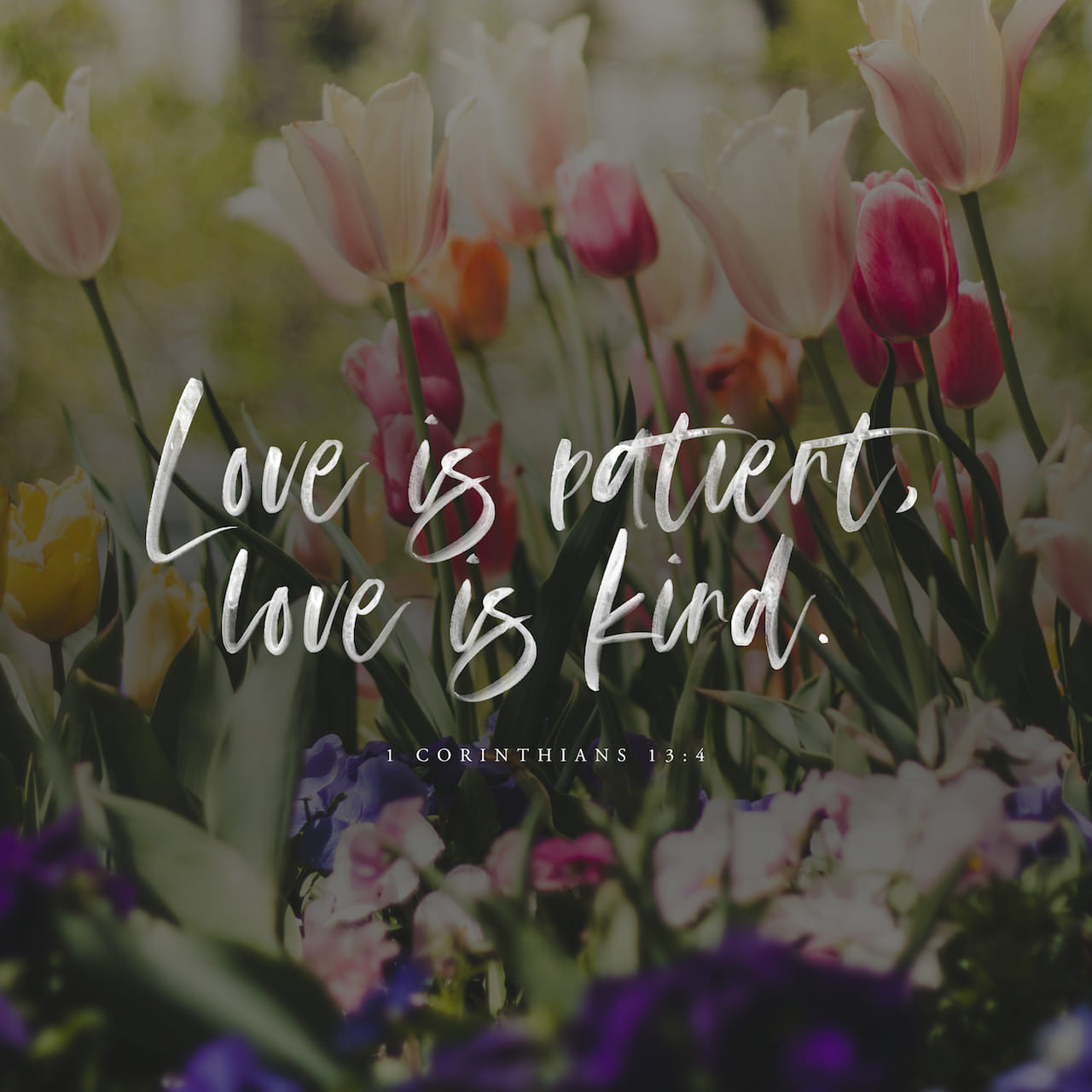 1 Corinthians 13:4-13 Love is patient and kind. Love is not jealous or boastful or proud or rude. It does not demand its own way. It is not irritable, and it keeps no record of being wronged. It does not rejoice about inju | New Living Translation (NLT)