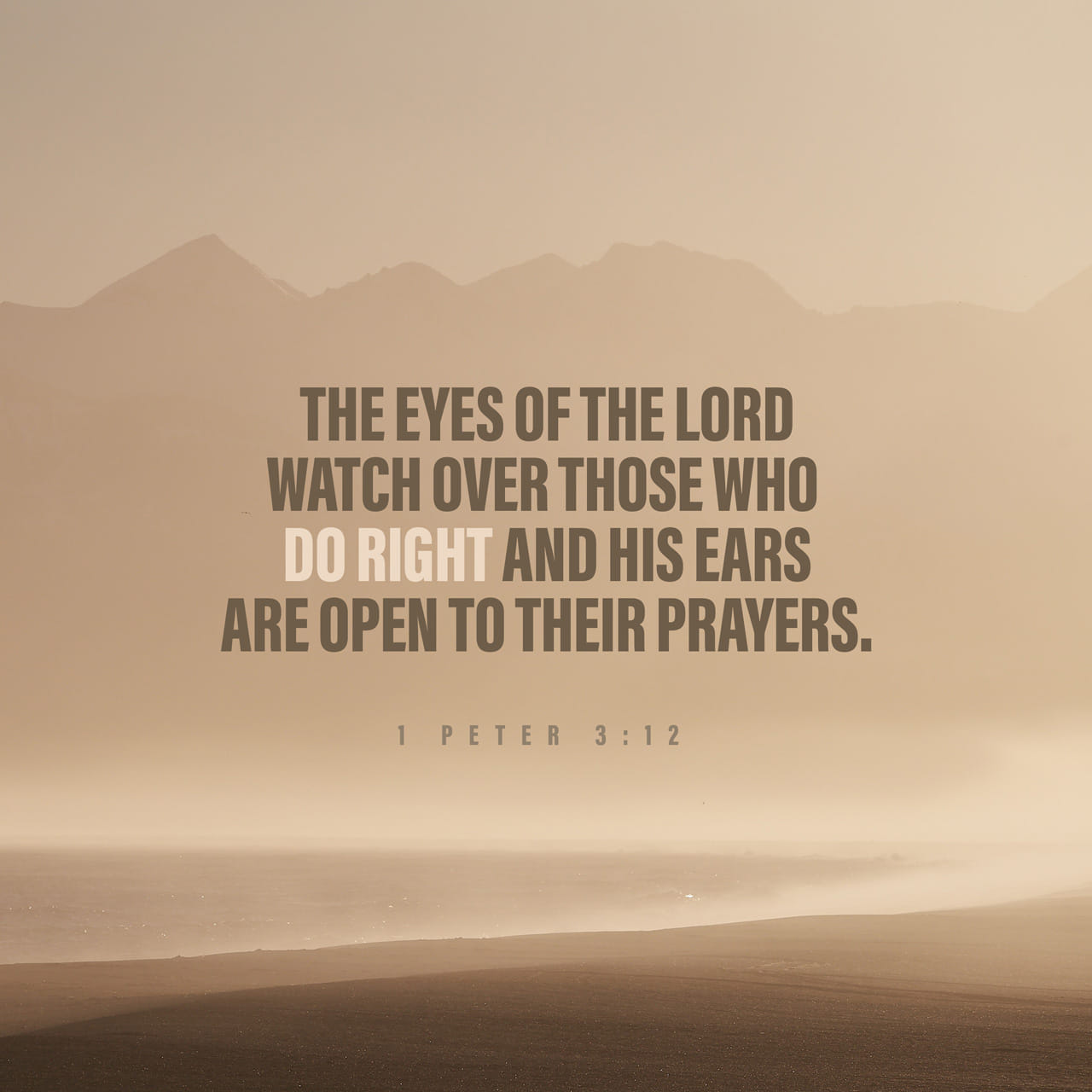 1 Peter 3:12-13 For the eyes of the Lord are over the righteous, and his ears are open unto their prayers: but the face of the Lord is against them that do evil. And who is he that will harm you, if ye be followers o | King James Version (KJV)