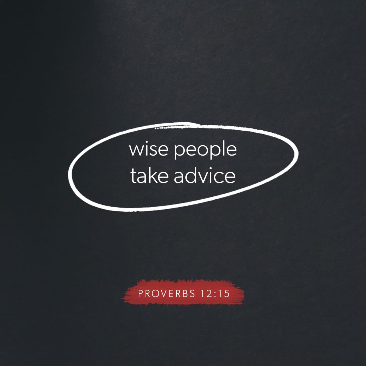Proverbios 12:15 Los necios creen que su propio camino es el correcto, pero los sabios prestan atención a otros. | Nueva Traducción Viviente (NTV)