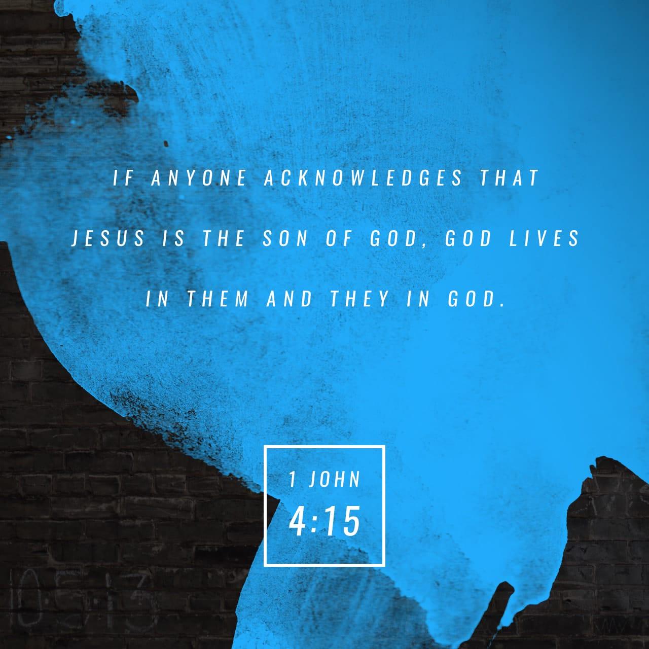 1 Juan 4:15 Todos los que declaran que Jesús es el Hijo de Dios, Dios vive en ellos y ellos en Dios. | Nueva Traducción Viviente (NTV)