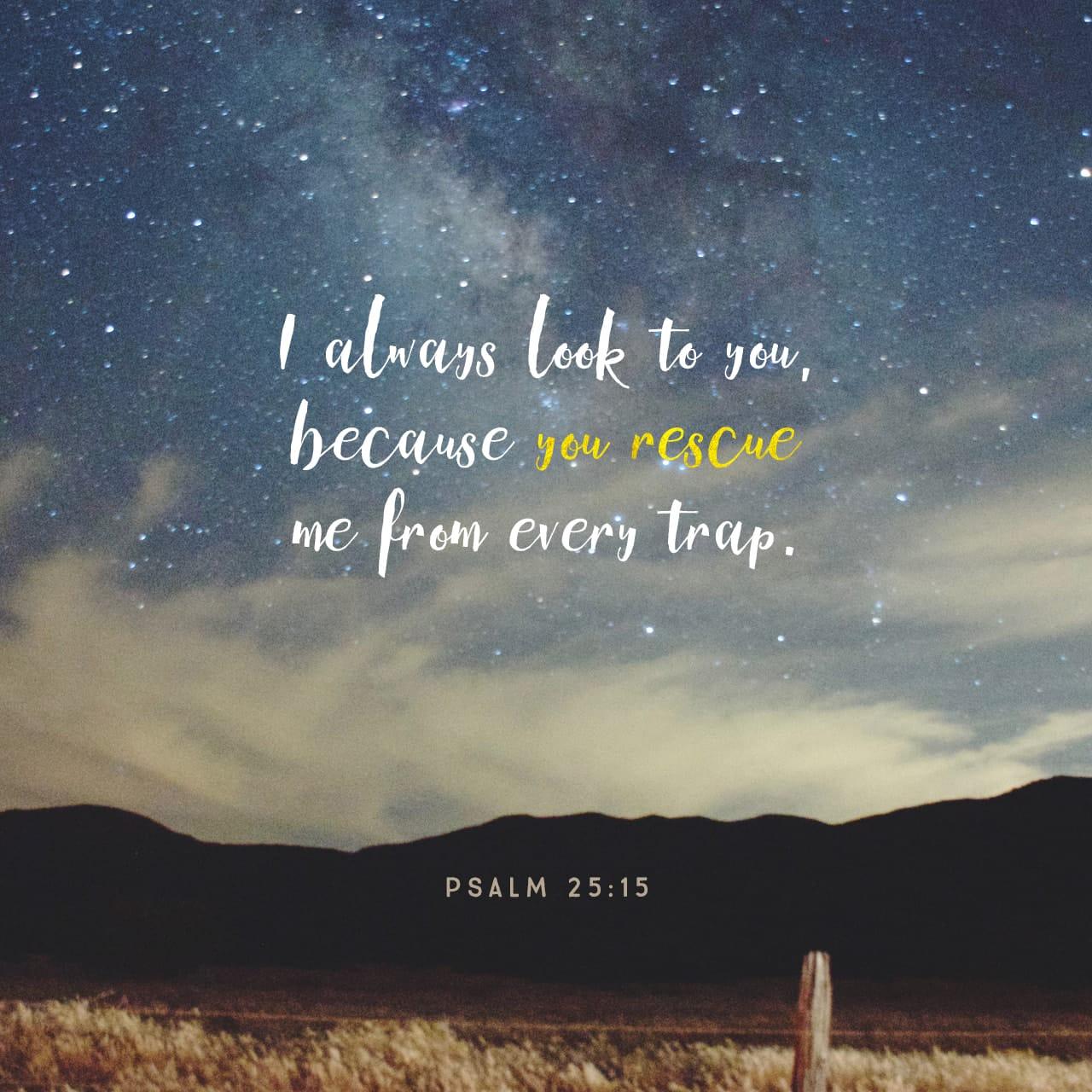 SALMOS 25:15 Mis ojos tengo siempre en el Señor, él libera mis pies de la trampa. | La Biblia Hispanoamericana (Traducción Interconfesional, versión hispanoamericana) (BHTI)
