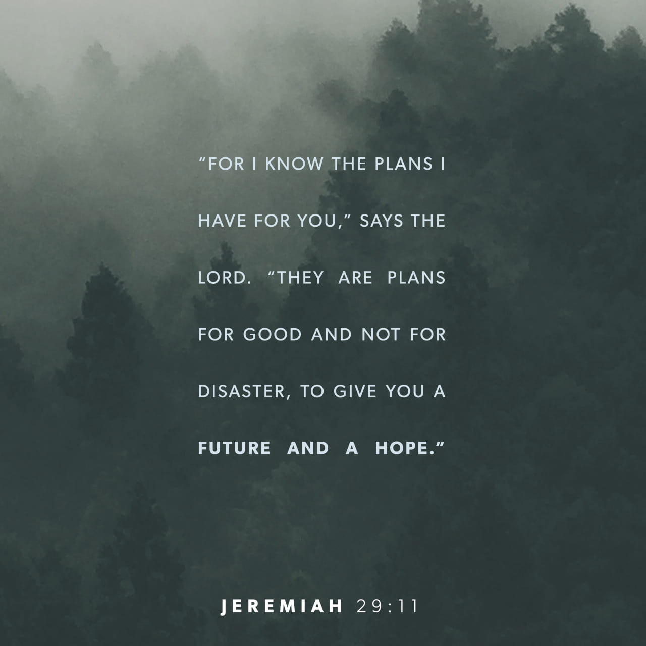 """For I know the plans I have for you,"""" says the Lord. """"They are plans for good and not for disaster, to give you a future and a hope. - Jeremiah 29:11 - Verse Image"""