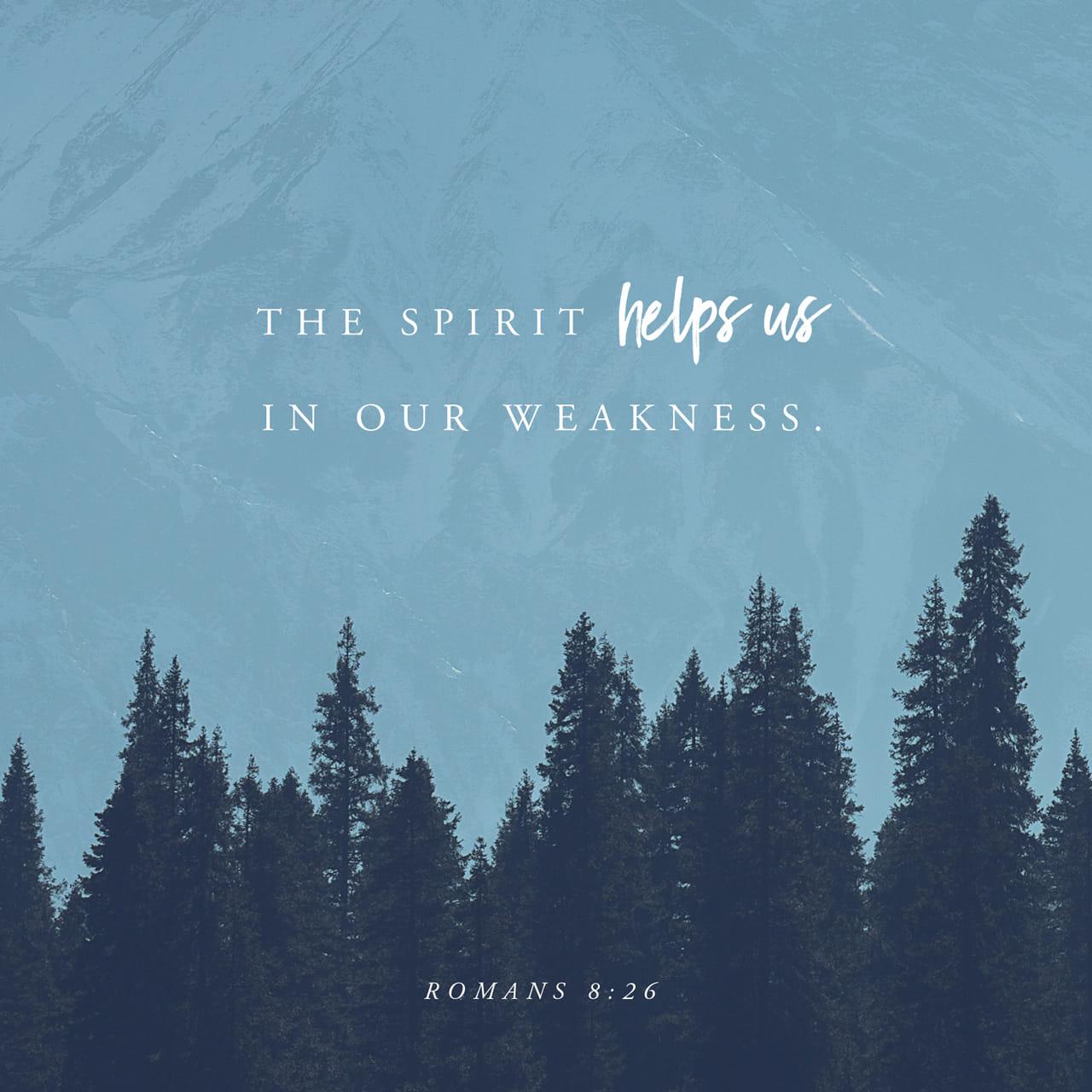 Romanos 8:26 Además, el Espíritu Santo nos ayuda en nuestra debilidad. Por ejemplo, nosotros no sabemos qué quiere Dios que le pidamos en oración, pero el Espíritu Santo ora por nosotros con gemidos que no pueden | Nueva Traducción Viviente (NTV)