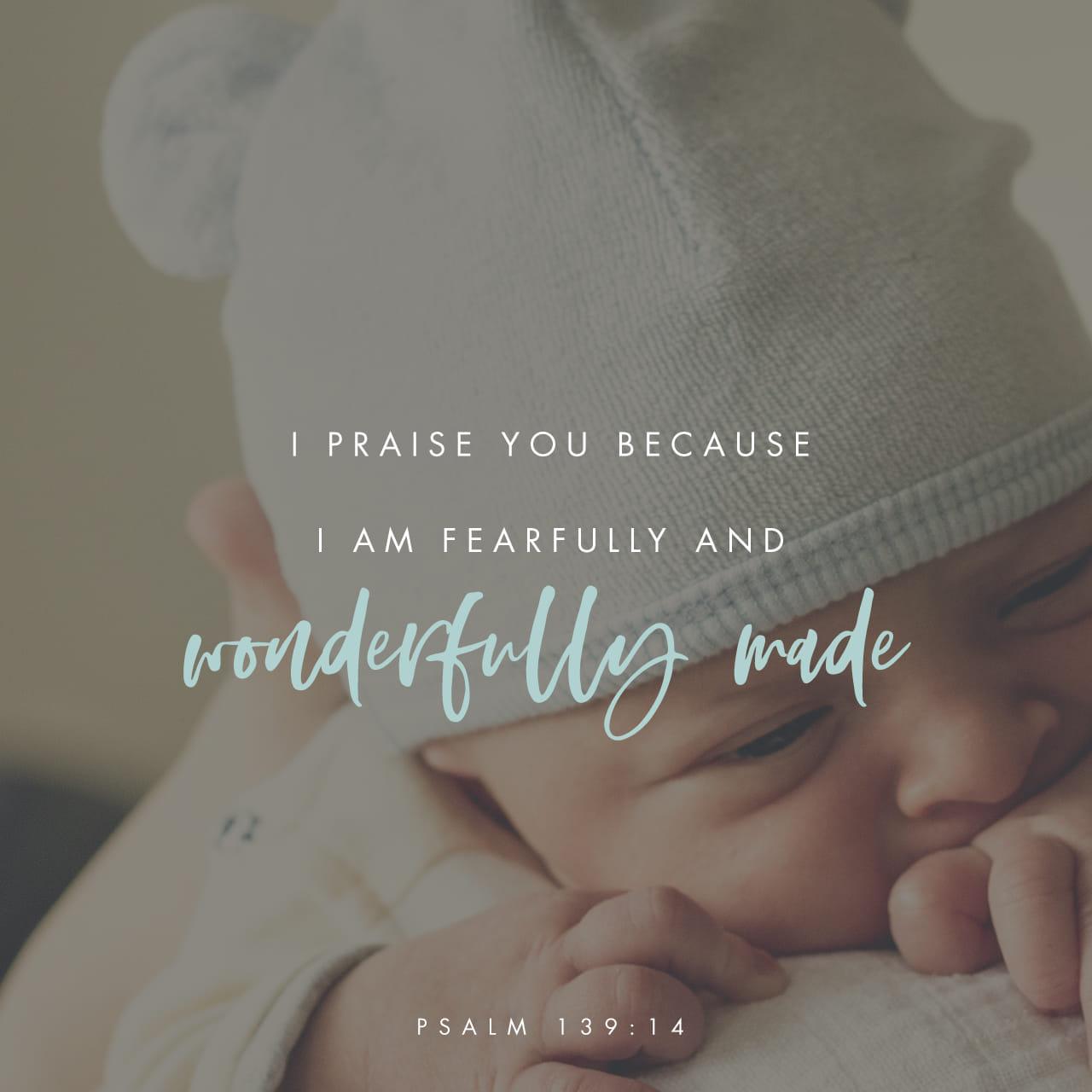 Salmos 139:13-14 Tú fuiste quien formó todo mi cuerpo; tú me formaste en el vientre de mi madre. Te alabo porque estoy maravillado, porque es maravilloso lo que has hecho. ¡De ello estoy bien convencido! | Biblia Dios Habla Hoy (DHH94PC)