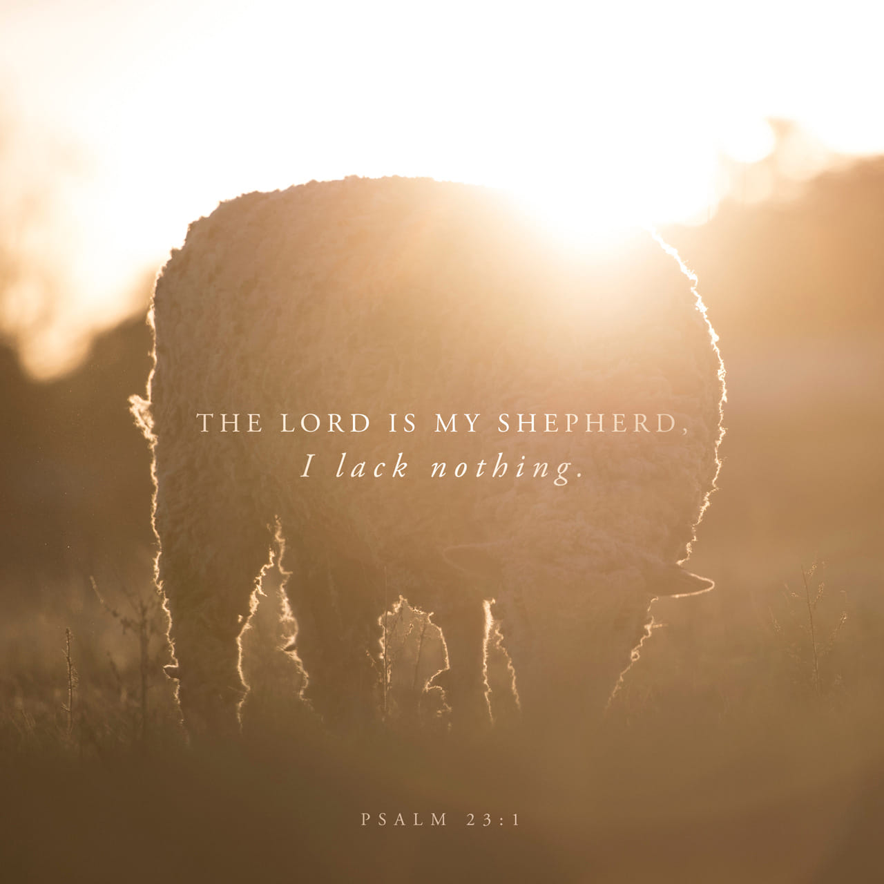 Psalm 23:1-6 The LORD is my shepherd, I lack nothing. He makes me lie down in green pastures, he leads me beside quiet waters, he refreshes my soul. He guides me along the right paths for his name's sake. Even tho | New International Version (NIV)