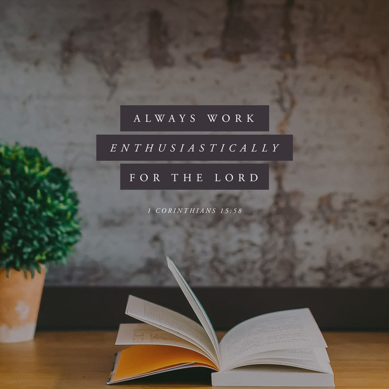 1 Corinthians 15:58 Therefore, my beloved brethren, be ye stedfast, unmoveable, always abounding in the work of the Lord, forasmuch as ye know that your labour is not in vain in the Lord. | King James Version (KJV)