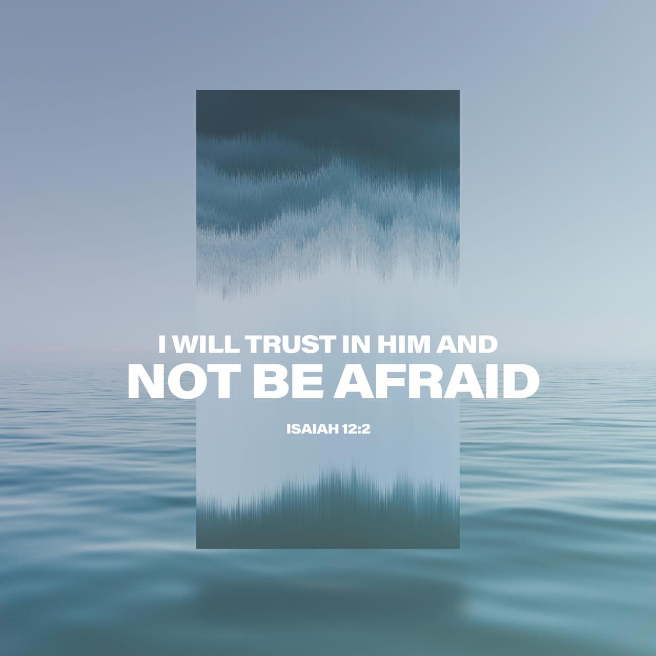 Isaías 12:2 Miren, Dios ha venido a salvarme. Confiaré en él y no tendré temor. El SEÑOR DIOS es mi fuerza y mi canción; él me ha dado la victoria». | Nueva Traducción Viviente (NTV)