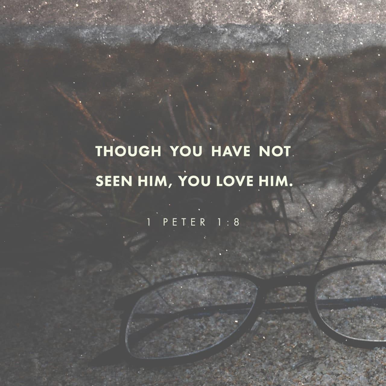 1 Pedro 1:8 Ustedes aman a Jesucristo a pesar de que nunca lo han visto. Aunque ahora no lo ven, confían en él y se gozan con una alegría gloriosa e indescriptible. | Nueva Traducción Viviente (NTV)