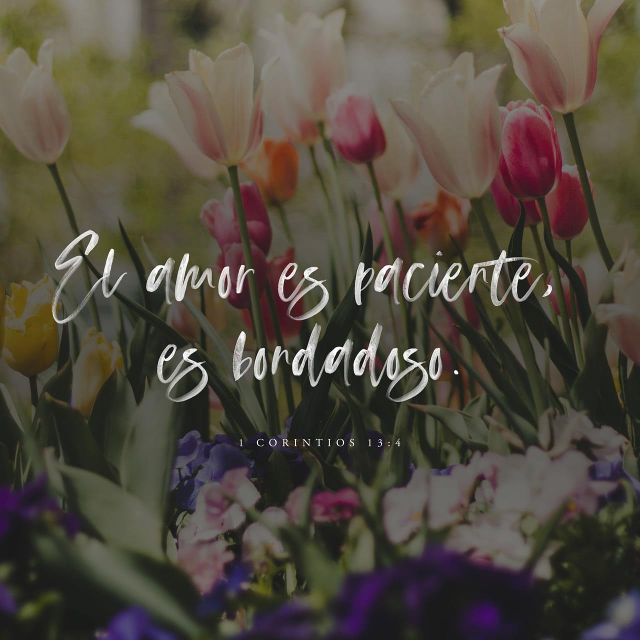 Imagen de Versículo para 1Corintios 13:4