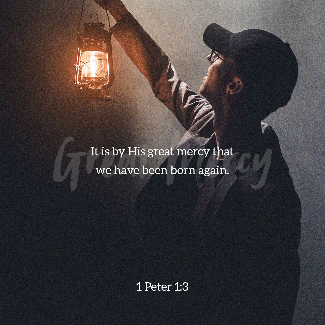 Prima lettera di Pietro 1:3 Benedetto sia il Dio e Padre del nostro Signore Gesú Cristo, che nella sua grande misericordia ci ha fatti rinascere a una speranza viva mediante la risurrezione di Gesú Cristo dai morti | Nuova Riveduta 1994 (NR94)