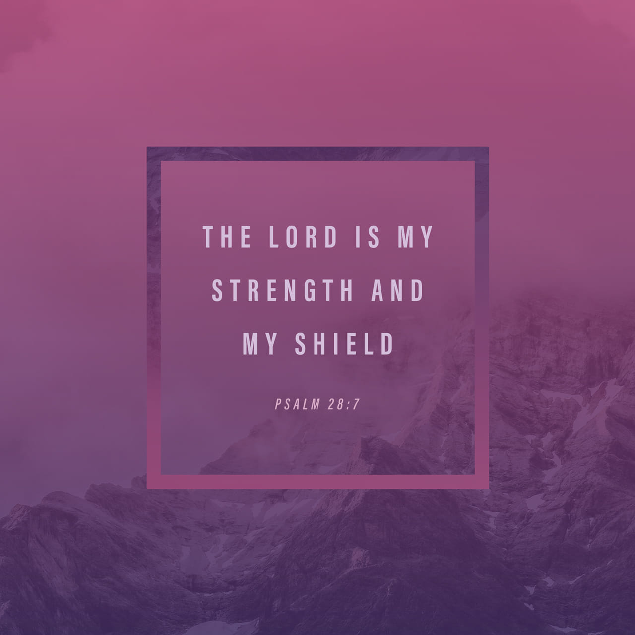 Psalms 28:7 The LORD is my strength and my shield