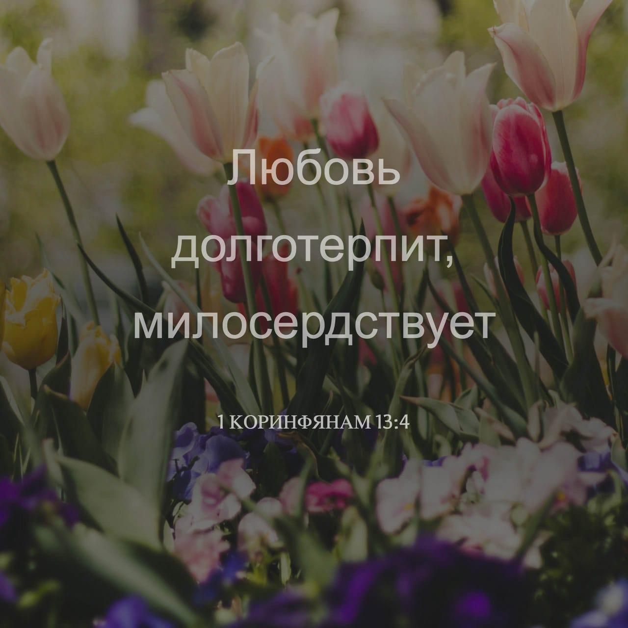 Фото-стих 1 Коринфянам 13:4