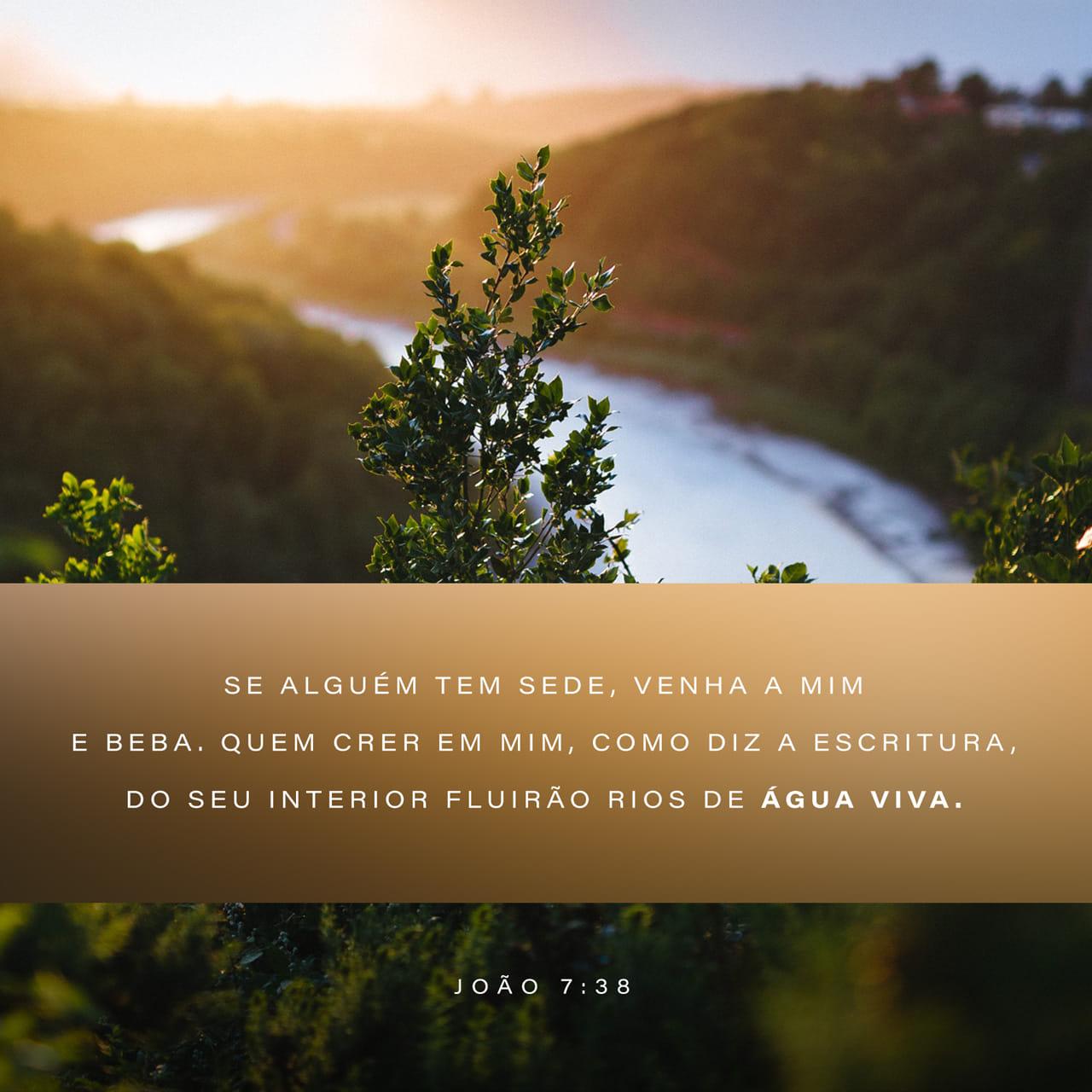 """João 7:38 Quem crer em mim, como diz a Escritura, do seu interior fluirão rios de água viva"""".   Nova Versão Internacional Português (NVI-P)   Baixar o App da Bíblia agora"""