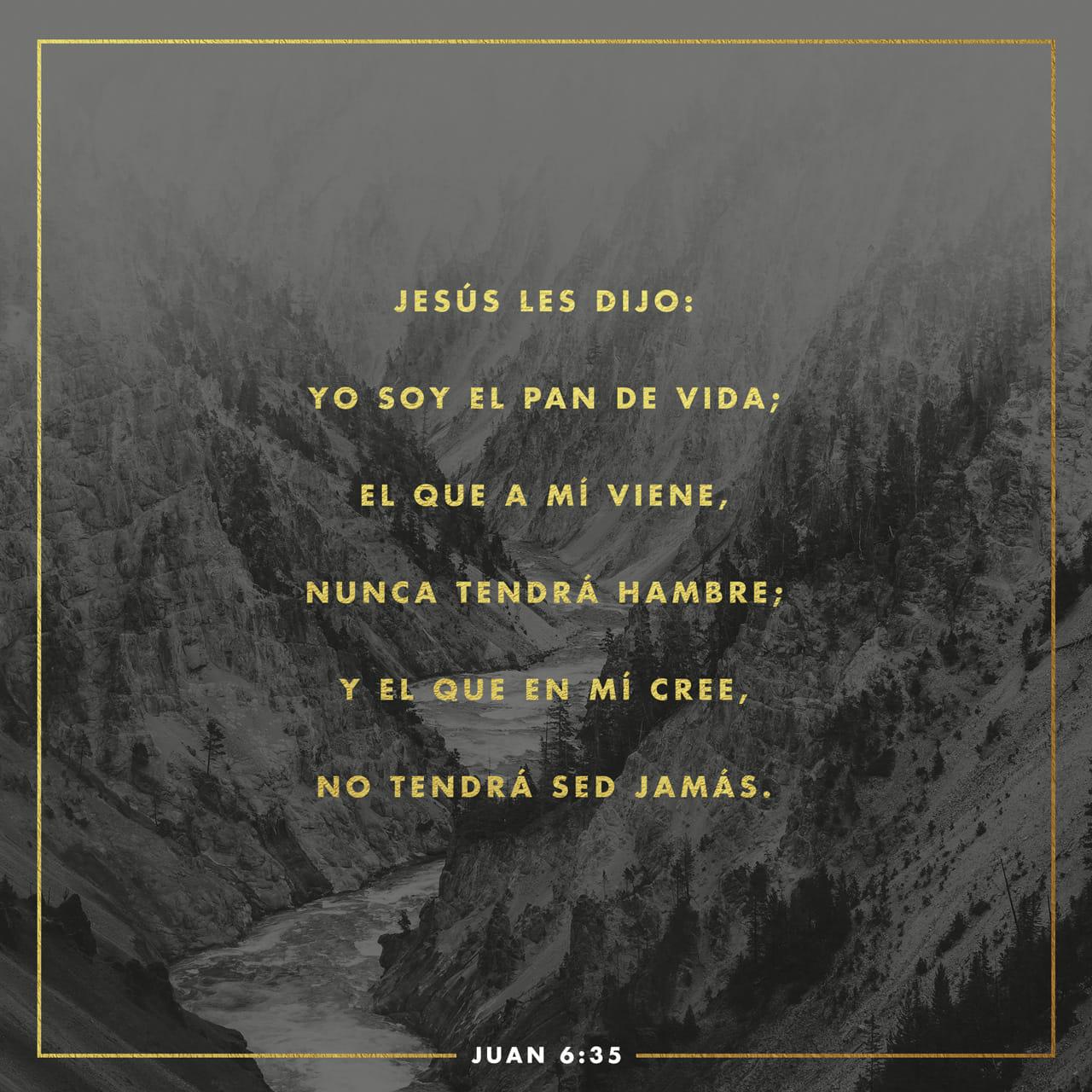 S.Juan 6:35 Jesús les dijo: Yo soy el pan de vida; el que a mí viene, nunca tendrá hambre; y el que en mí cree, no tendrá sed jamás. | Biblia Reina Valera 1960 (RVR1960) | Descargar la Biblia App ahora