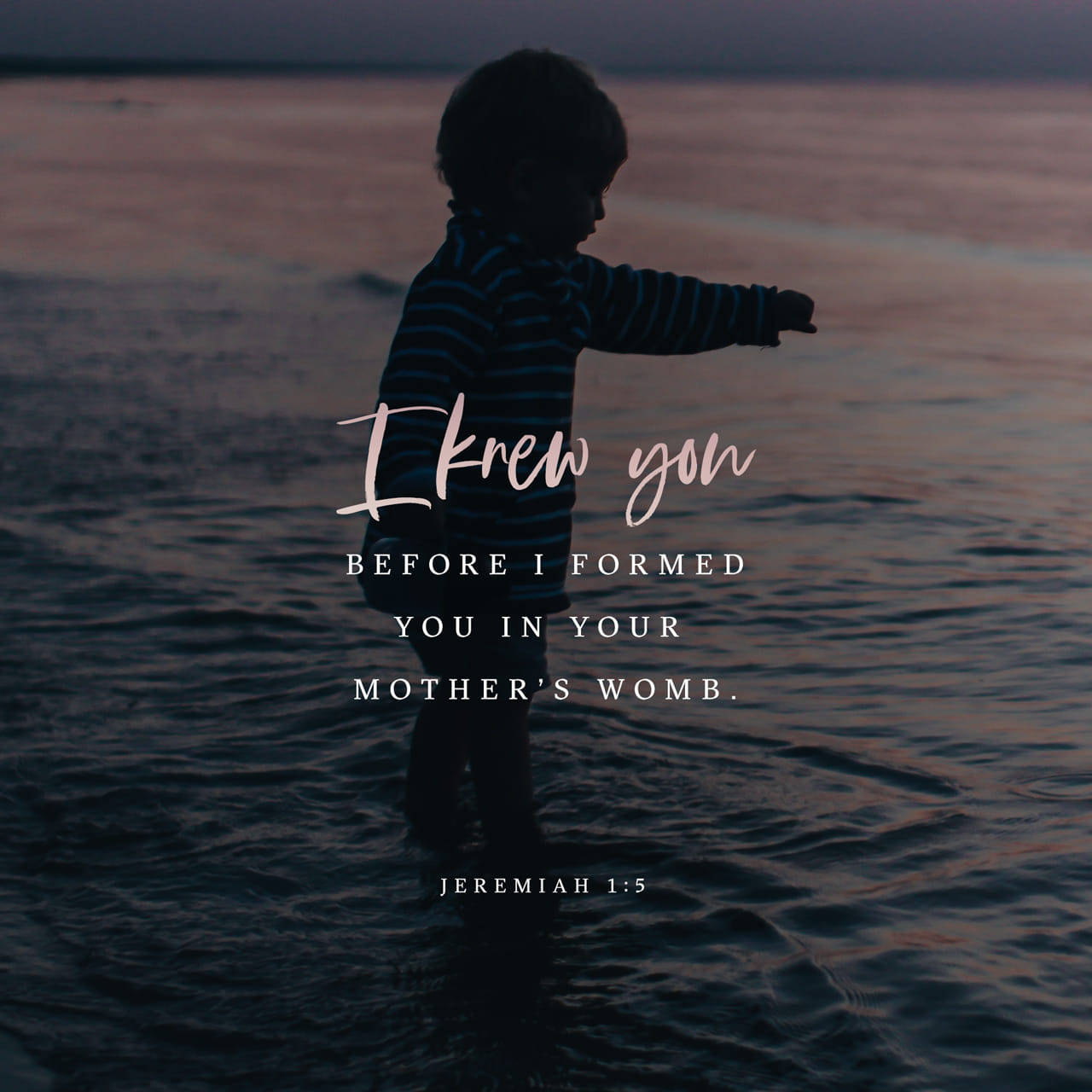 Jeremiah 1:5 Before I formed thee in the belly I knew thee; and before thou camest forth out of the womb I sanctified thee, and I ordained thee a prophet unto the nations. | King James Version (KJV)