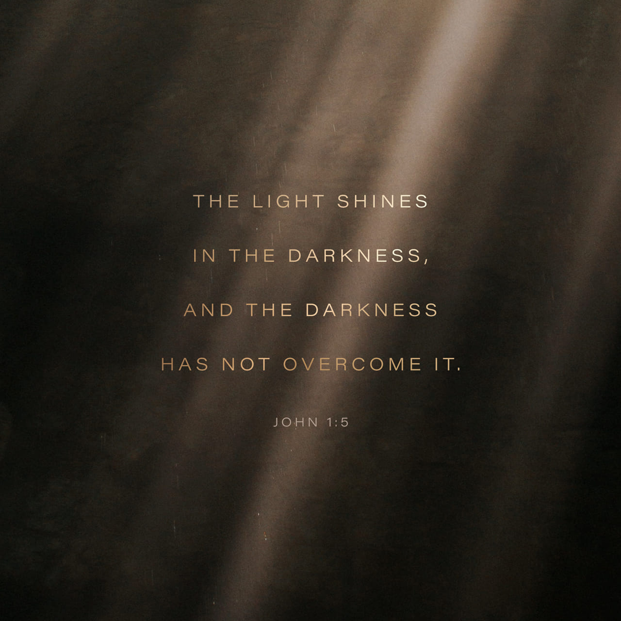 John 1:5 And the light shineth in darkness; and the darkness comprehended it not. | King James Version (KJV)