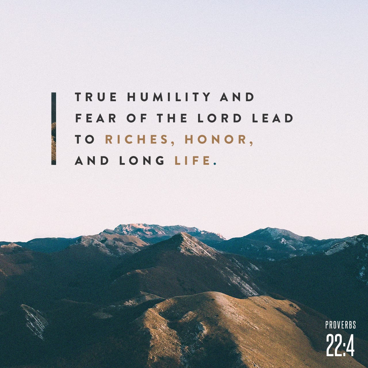 Proverbs 22:4 By humility and the fear of the LORD are riches, and