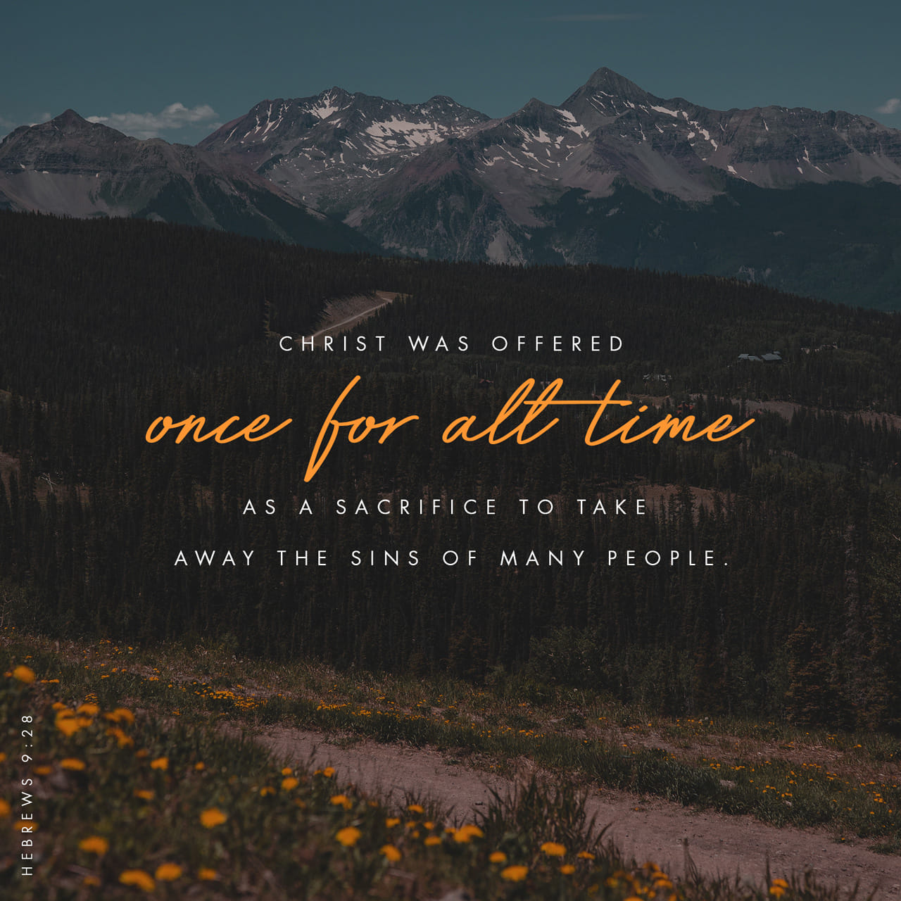 Hebrews 9:28 Even so it is that Christ, having been offered to take upon Himself and bear as a burden the sins of many once and once for all, will appear a second time, not to carry any burden of sin nor to deal w