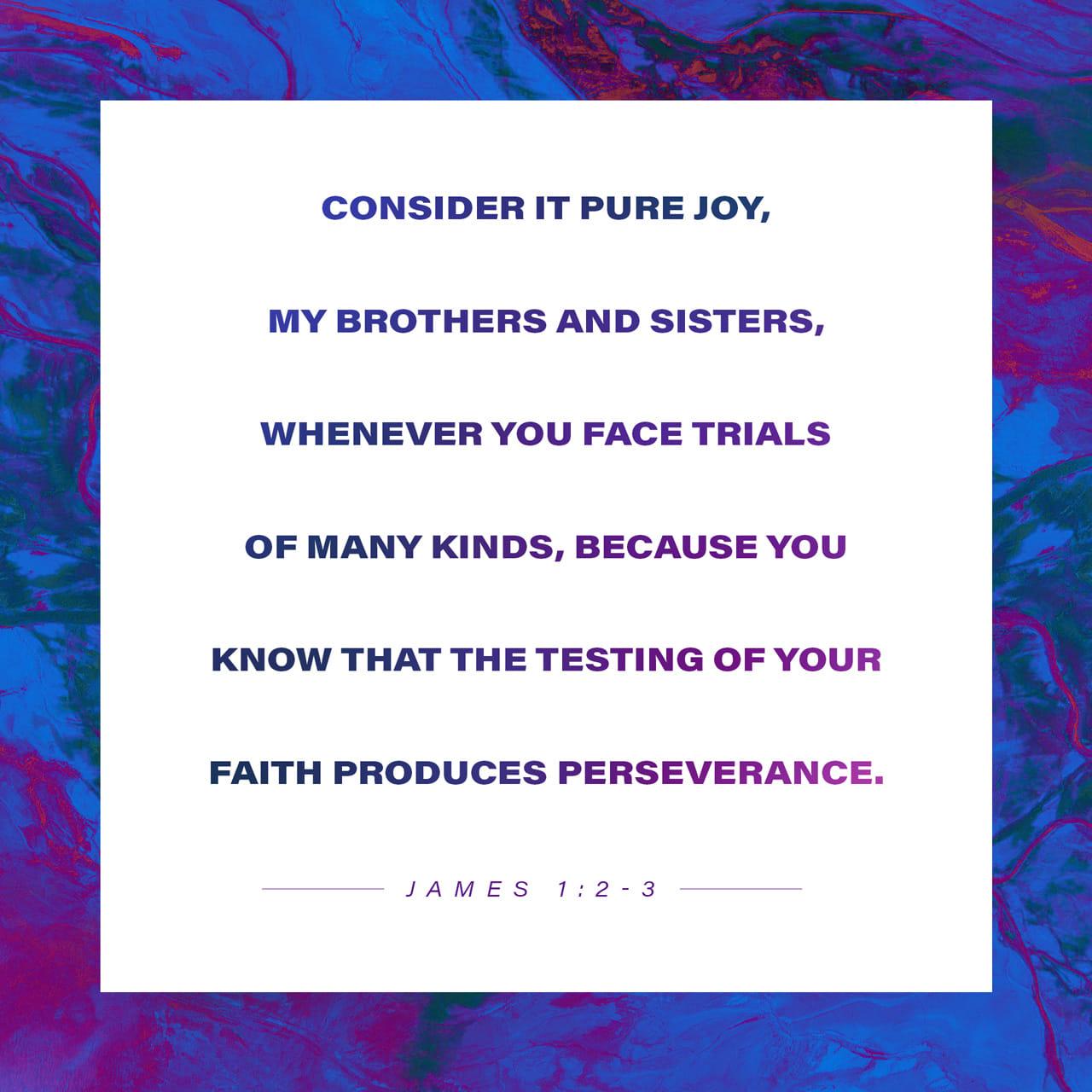 Santiago 1:2-3 Hermanos en Cristo, ustedes deben sentirse muy felices cuando pasen por toda clase de dificultades. Así, cuando su confianza en Dios sea puesta a prueba, ustedes aprenderán a soportar con más fuerza l | Traducción en Lenguaje Actual (TLA)