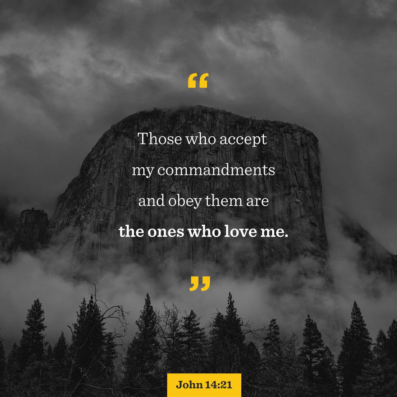 Verse of the Day - John 14:14-30   The Bible App   Bible com
