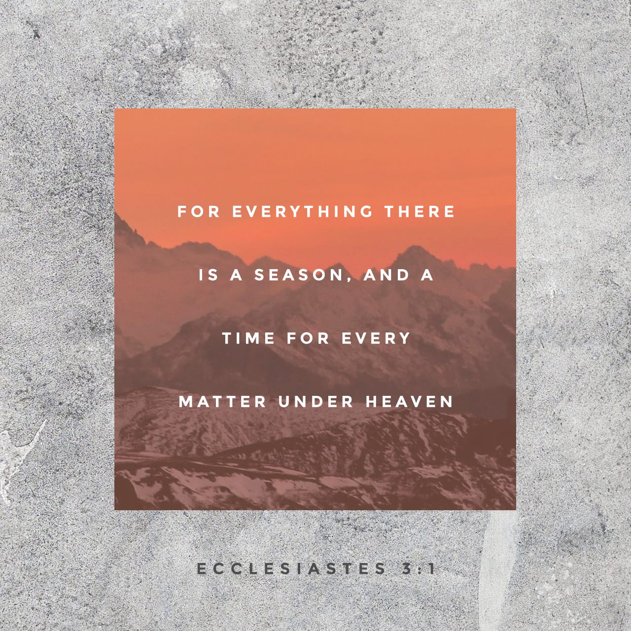 Ecclesiastes 3:1-8 There's an opportune time to do things, a right time for everything on the earth: A right time for birth and another for death, A right time to plant and another to reap, A right time to kill and ano | The Message (MSG)
