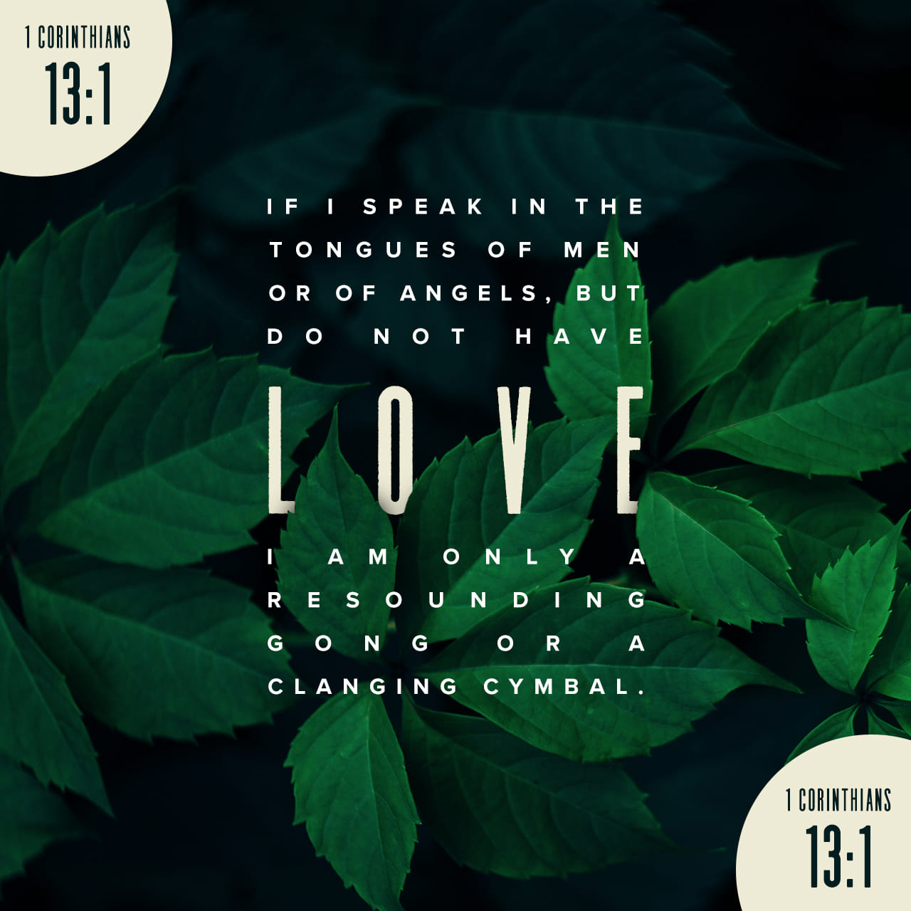 1 Corinthians 13:1 If I speak with the tongues of men and of angels, but do not have love, I have become a noisy gong or a clanging cymbal. | New American Standard Bible (NASB) | Descargar la Biblia App ahora