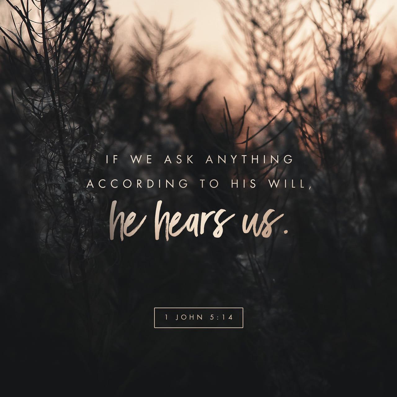 Prima lettera di Giovanni 5:14-15 Questa è la fiducia che abbiamo in lui: che se domandiamo qualche cosa secondo la sua volontà, egli ci esaudisce. Se sappiamo che egli ci esaudisce in ciò che gli chiediamo, noi sappiamo di aver le co | Nuova Riveduta 1994 (NR94)