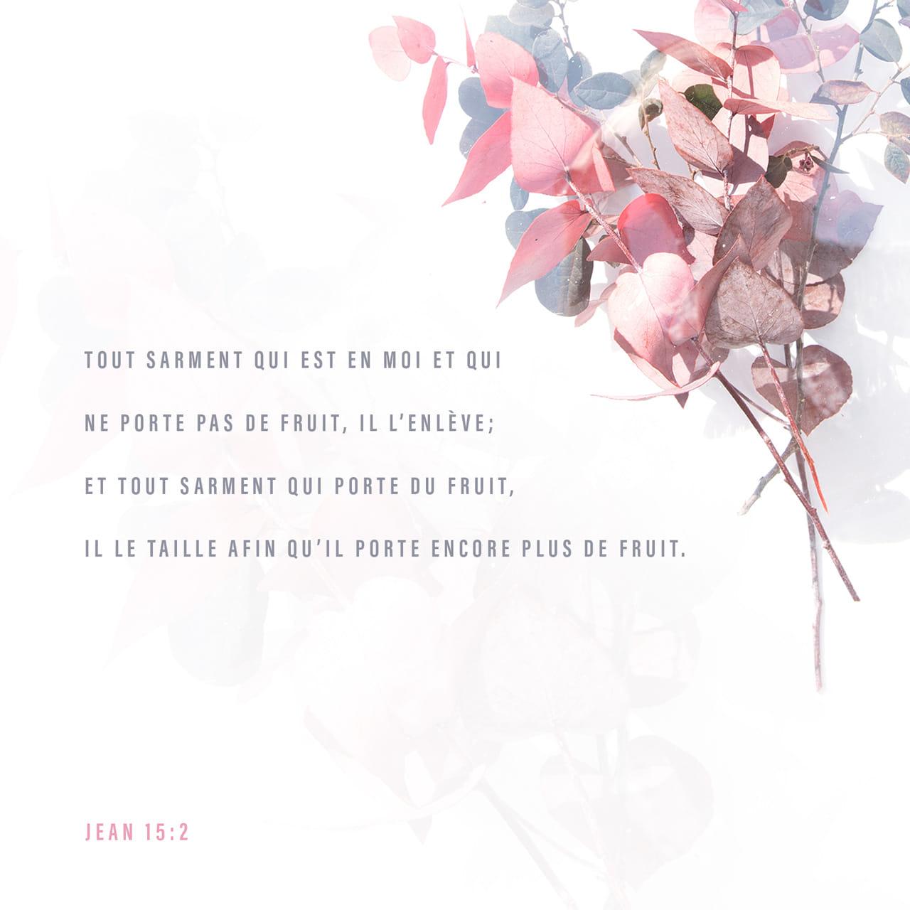 Il enlève toutes mes branches qui ne donnent pas de fruits et il taille toutes les branches qui donnent des fruits. Ainsi elles en donneront encore. - Jean 15:2 - Verset illustré
