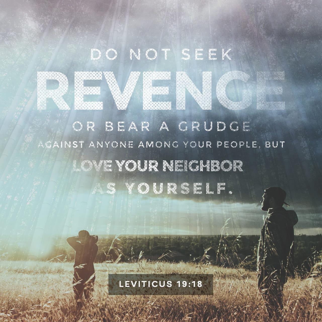 Levítico 19:18 »No busques vengarte, ni guardes rencor contra tus hermanos israelitas, sino ama a tu prójimo como a ti mismo. Yo soy el SEÑOR. | Nueva Traducción Viviente (NTV)