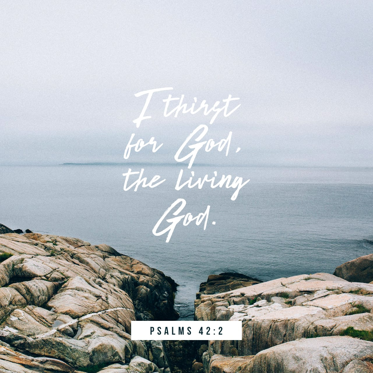 Psalm 42:2 My soul thirsts for God, for the living God  When