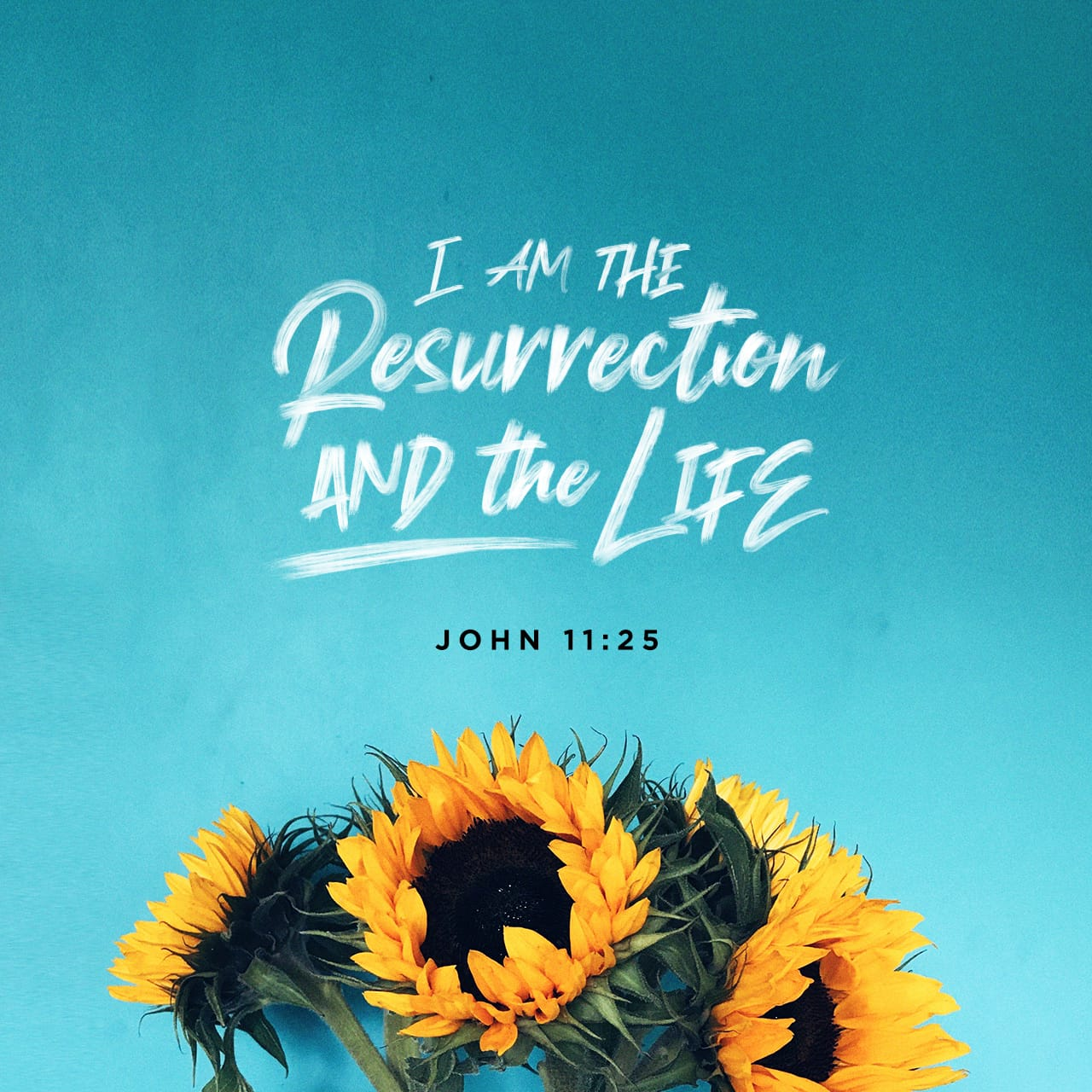 Verse Image for John 11:25