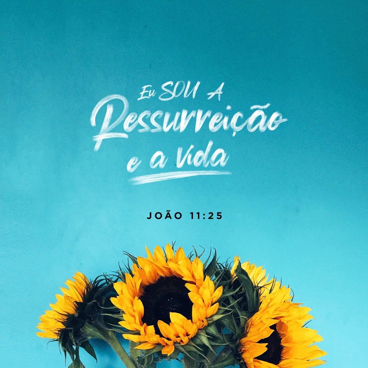 Imagem do Versículo de João 11:25