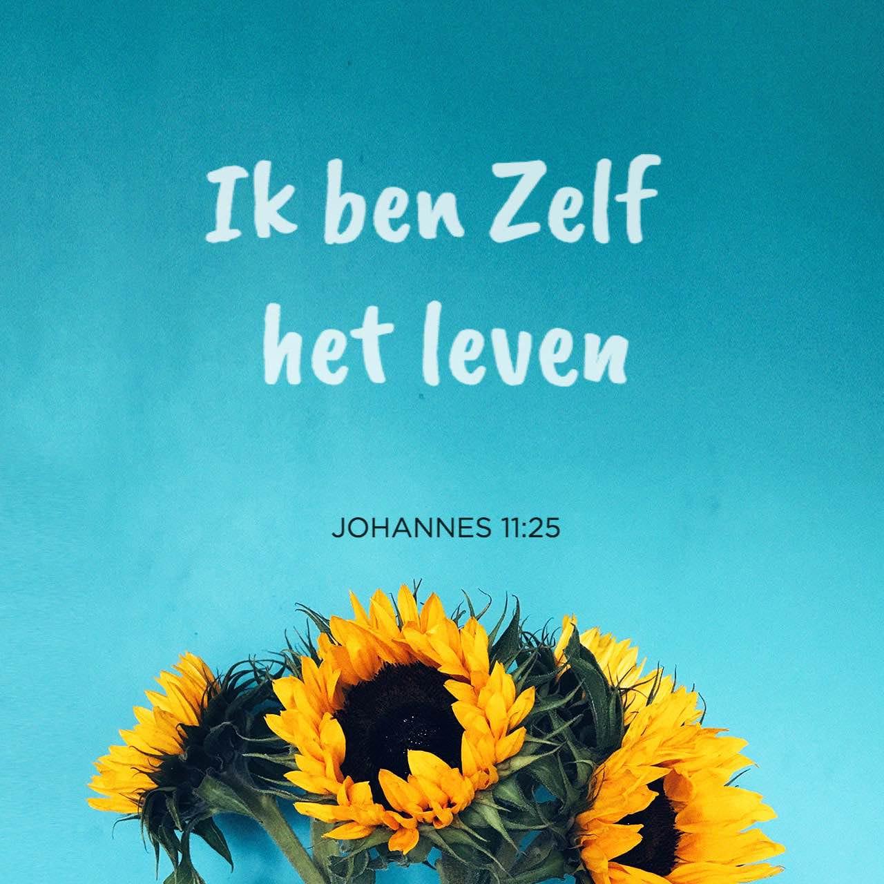 Versafbeelding voor Johannes 11:25