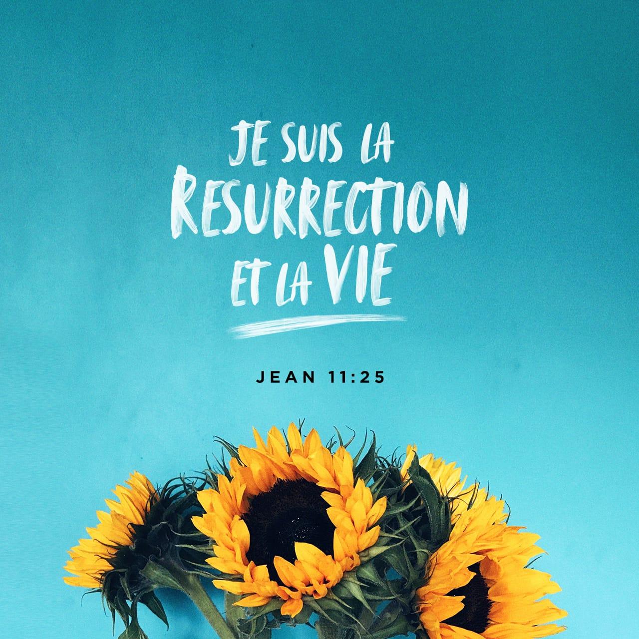 Verset illustré pour Jean 11:25 LSG