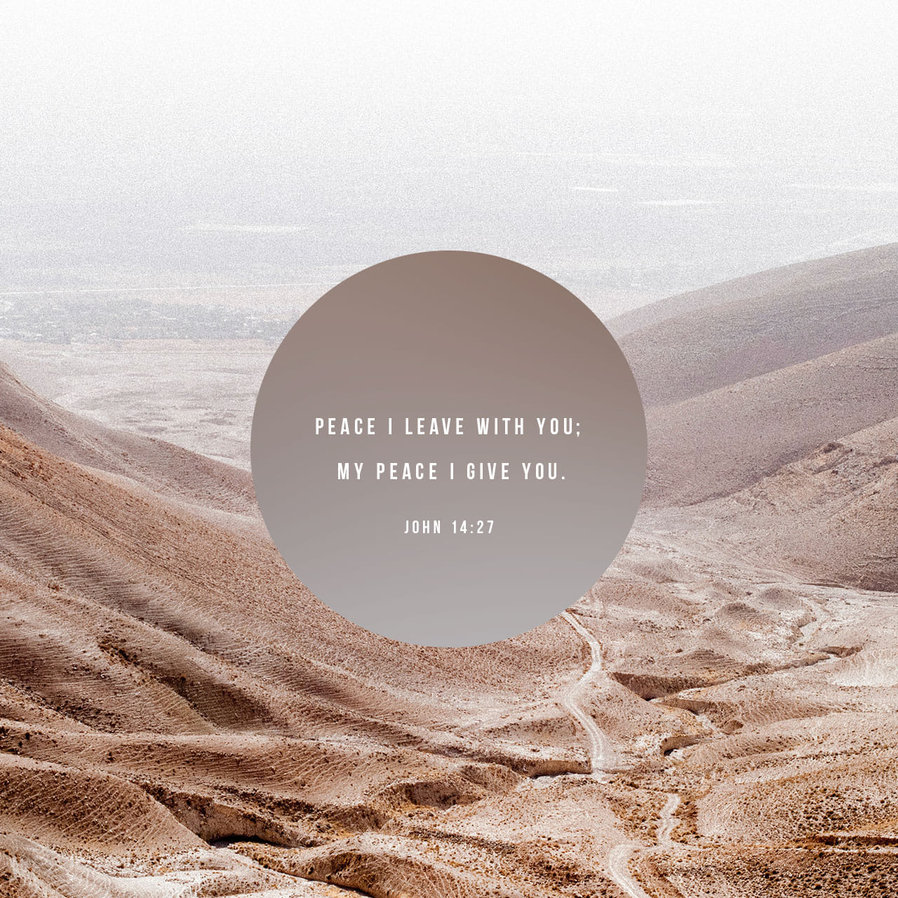 Peace I leave with you; my peace I give you. - John 14:27 - Verse Image