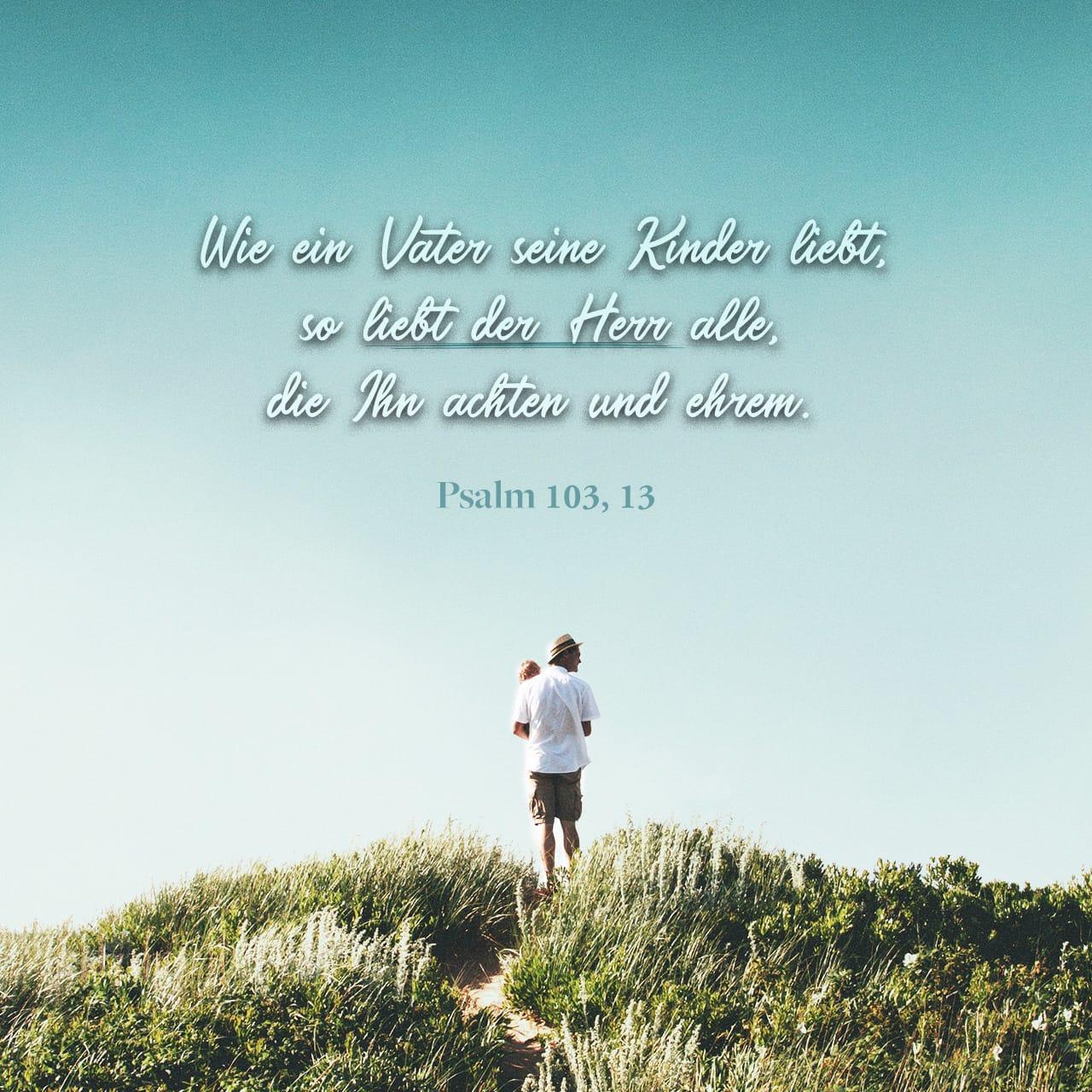 Wie ein Vater seine Kinder liebt, so liebt der HERR alle, die Ihn achten und ehren. - Psalm 103,13 - Versbild