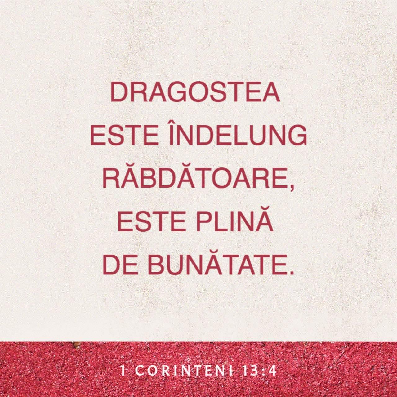 Dragostea este răbdătoare, dragostea este plină de bunătate - 1 Corinteni 13:4 - Verset ilustrat