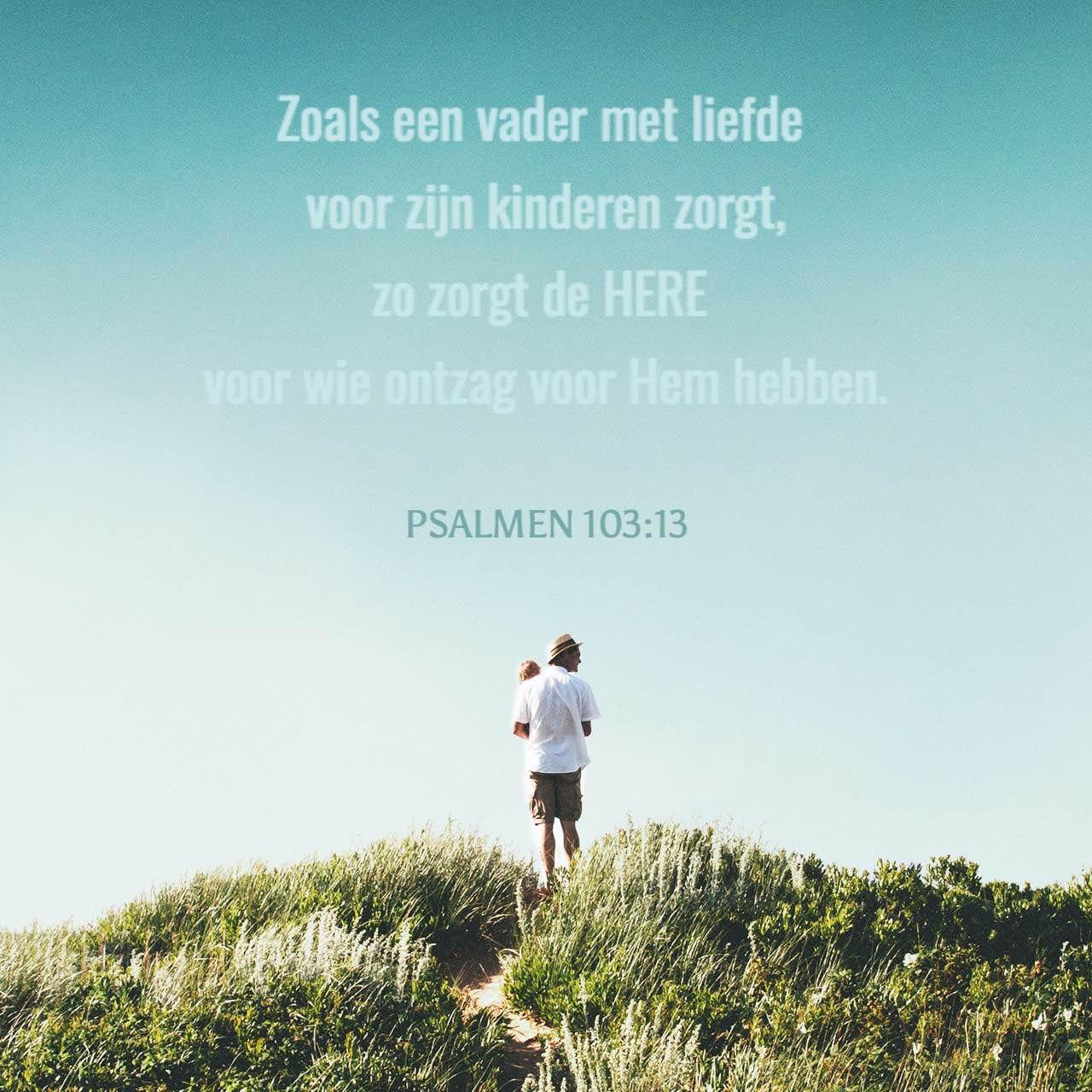 Versafbeelding voor Psalmen 103:13
