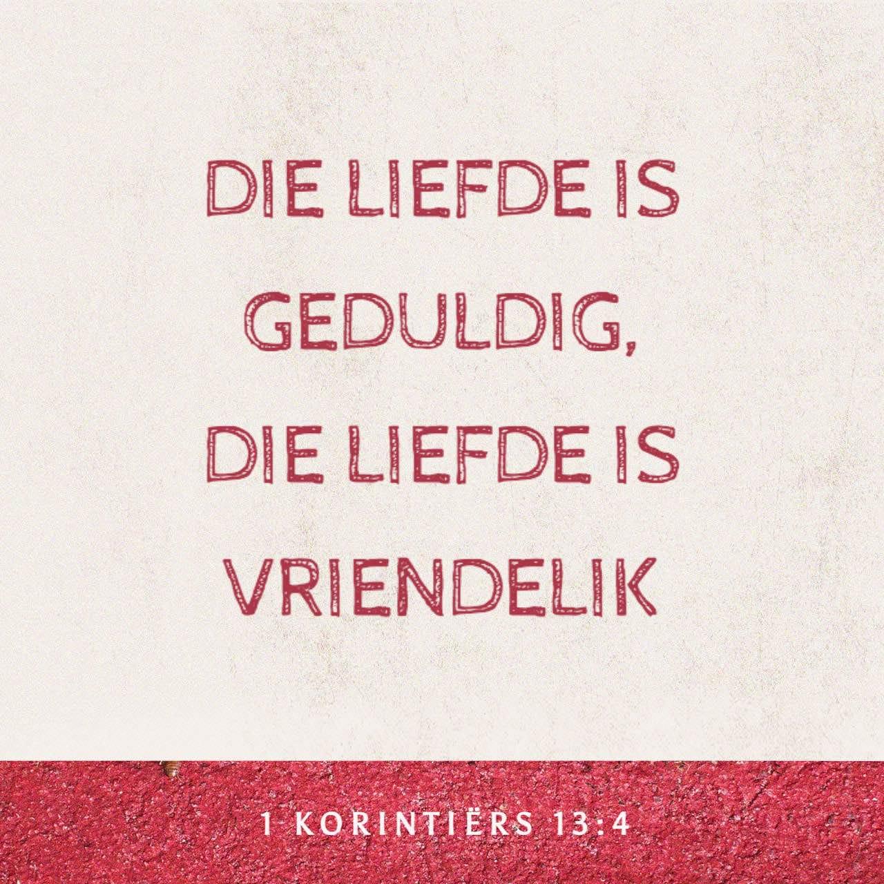 Die liefde is geduldig, die liefde is vriendelik - 1 Korintiërs 13:4 - versbeeld