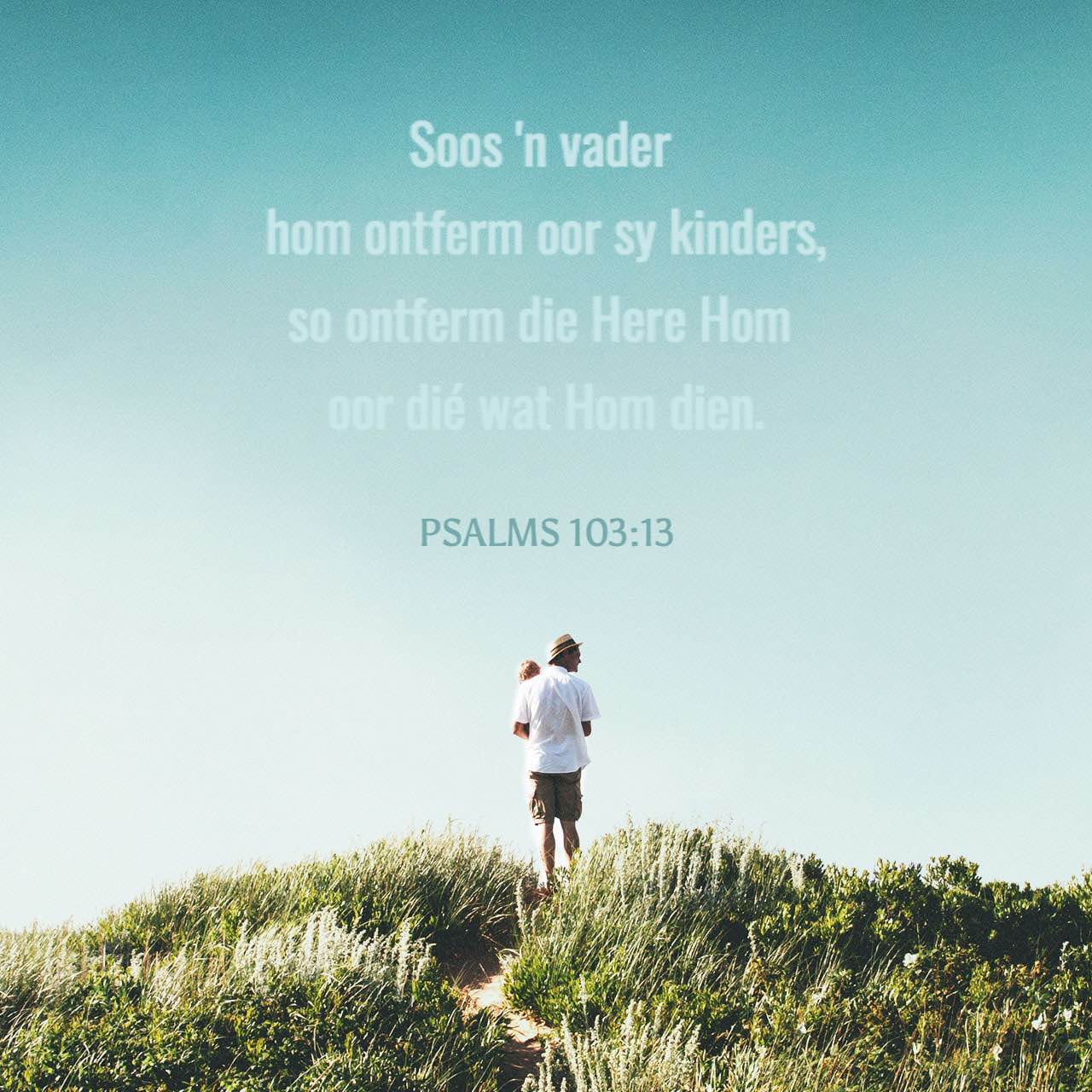 Versbeeld vir Psalms 103:13