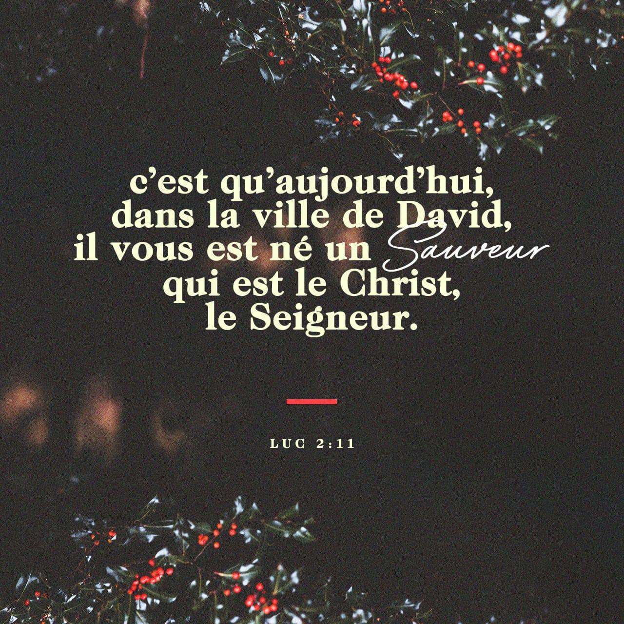 Aujourd'hui, dans la ville de David, un Sauveur vous est né. - Luc 2:11 - Image illustré