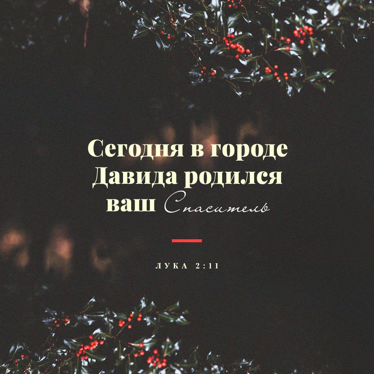 Ныне родился вам в городе Давидовом Спаситель. - Луки 2:11 - фото-стих